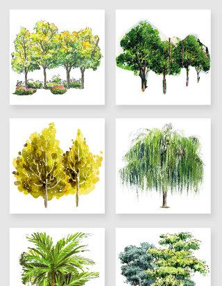 中国风水彩手绘树木png素材