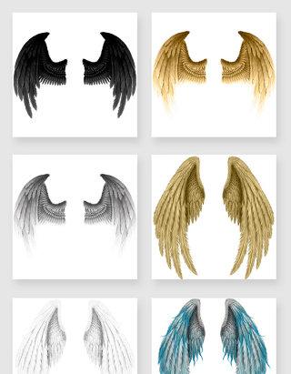 精致羽毛翅膀图片素材