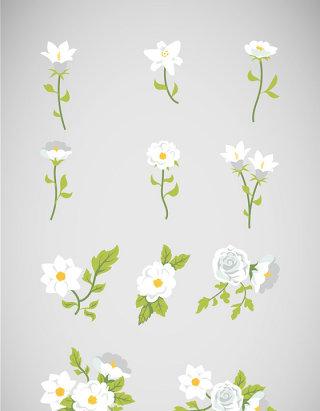 矢量白色花朵素材