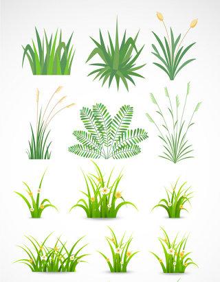 草地设计花草小草素材