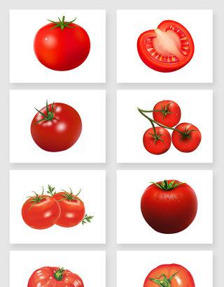 新鲜绿色环保的食材西红柿免扣图设计素材