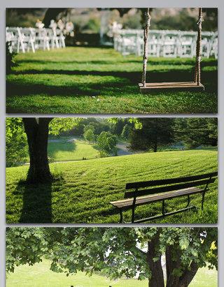 公园自然风景草地长凳