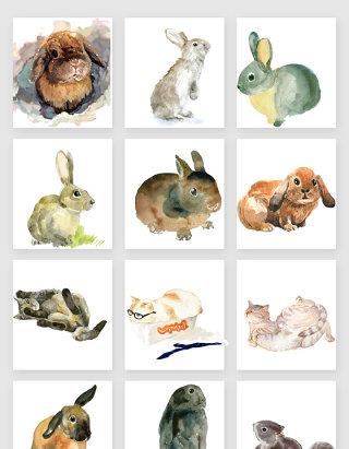 手绘水彩猫和兔子素材