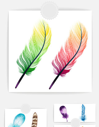 羽毛矢量设计素材