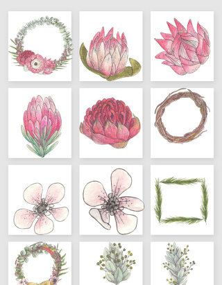 手绘复古花卉花朵素材