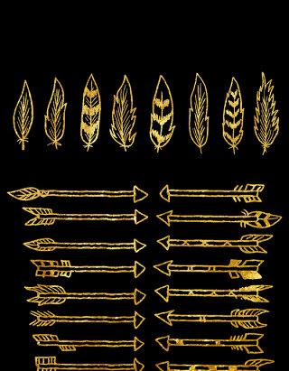 金色羽毛和箭