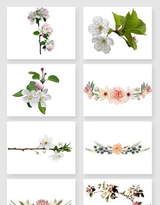 植物花卉植物花纹抽象花卉