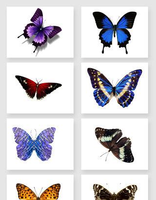 春天唯美蝴蝶PNG元素