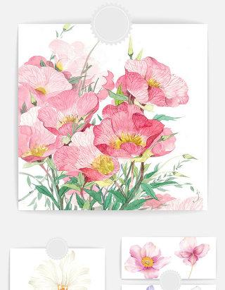 唯美手绘花朵元素