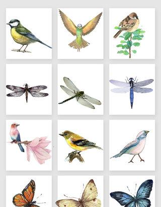 手绘蜻蜓小鸟蝴蝶素材