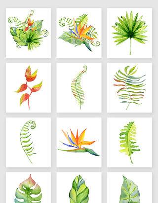 免扣图装饰图案绿色植物素材png格式
