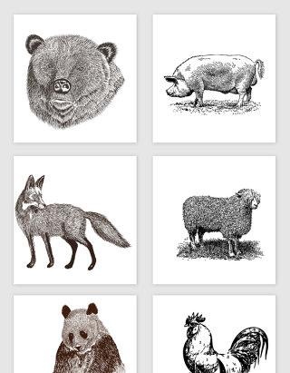 各种野生动物矢量元素