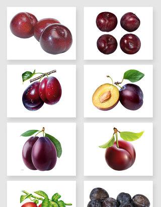 秀色可餐的李子水果免抠图设计素材