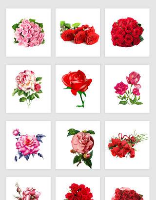 鲜艳手绘花卉素材
