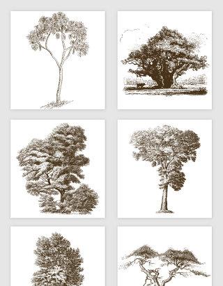槐树松树桉树绿色植被手绘插画矢量图形