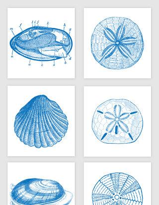 海底生物手绘素描矢量图形