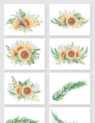 彩绘清新向日葵花卉矢量素材