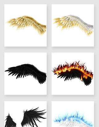 羽毛翅膀图片素材