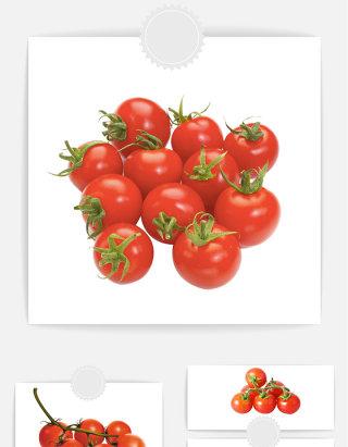 水果圣女果矢量素材