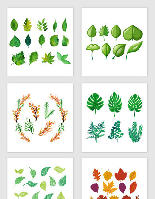 各型各样小清新树叶素材