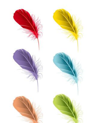 矢量彩色羽毛素材