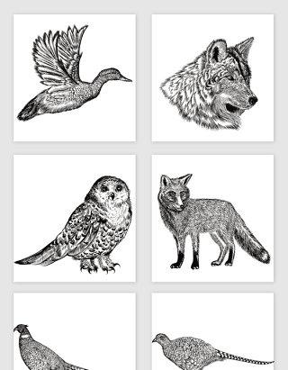 各种手绘动物矢量元素