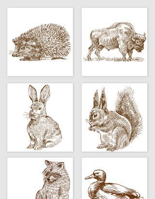 各种野生动物矢量元素合集