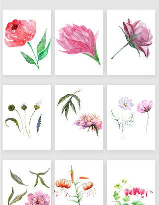 水彩手绘花卉花朵矢量素材
