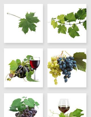 产品实物葡萄酒葡萄叶设计素材