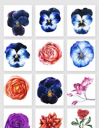 彩绘鲜花花朵矢量素材