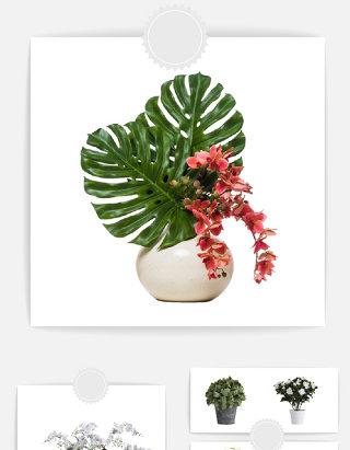 园艺盆栽鲜花元素