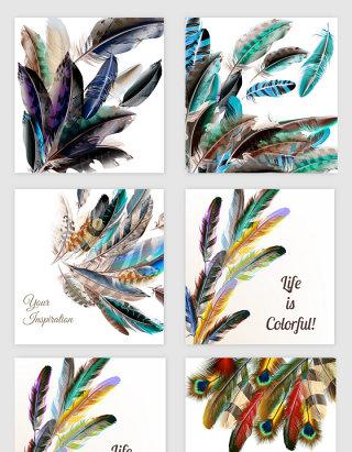 手绘彩色羽毛的素材