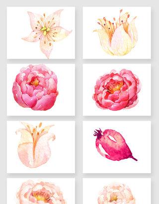 彩绘粉色唯美花卉素材