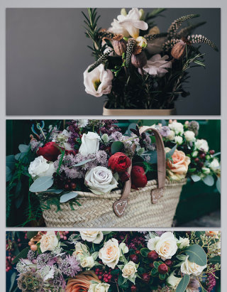 白玫瑰玫瑰花朵情人节