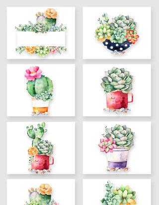 水彩手绘盆栽仙人球多肉植物素材