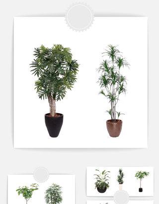 植物盆栽元素