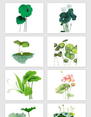 绿色荷叶荷花PNG免抠素材