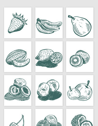 素描各种水果矢量素材