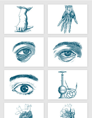 手绘素描眼睛心脏手部肌肉矢量元素