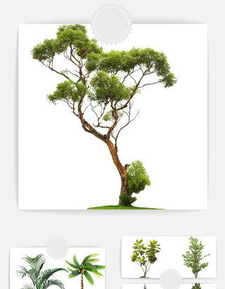 树木设计素材元素组