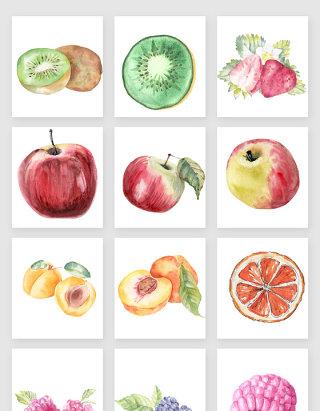 手绘水墨水彩水果矢量素材