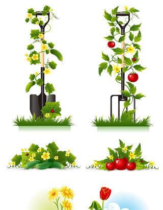 植物矢量素材