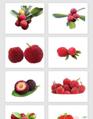红色杨梅PNG免抠素材