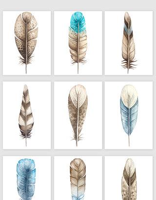 手绘鸟类羽毛矢量素材