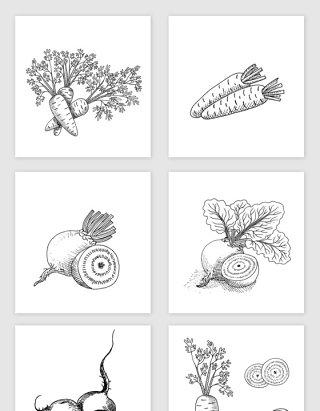 黑白线描手绘素描萝卜矢量素材