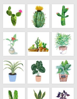 高清免抠手绘绿色多肉植物