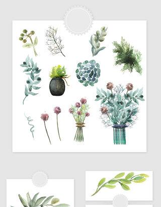 高清免抠手绘水彩彩绘植物