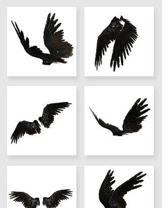 高清免抠黑色羽毛翅膀素材