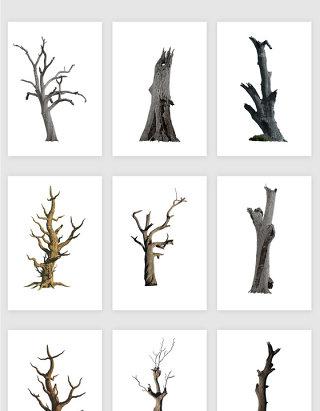 高清免抠png枯树素材