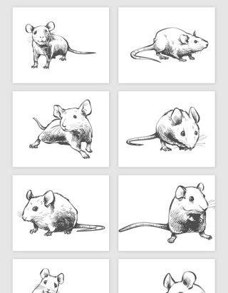 手绘小老鼠矢量素材